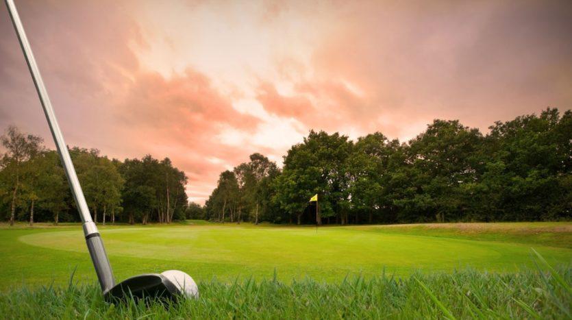 Nemus Genius Loci: golf tramonto